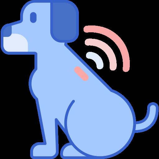 CHIP Para Perros y Gatos: Todo lo que tenés que saber